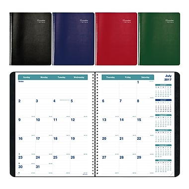 Brownline 2017/2018 Academic Monthly Planner, 11
