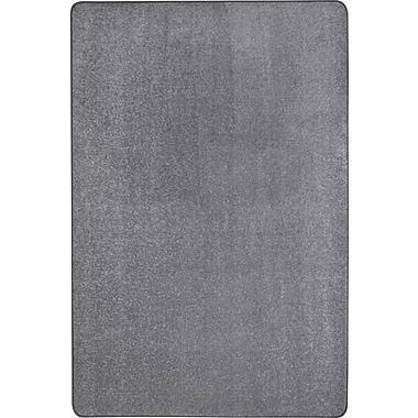 Joy Carpets – Tapis Endurance, 12 x 6 pi, argenté