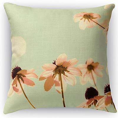 Kavka Pastel Accent Pillow; 16'' H x 16'' W x 5'' D