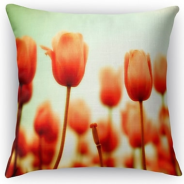 Kavka Red Square Throw Pillow; 24'' H x 24'' W x 5'' D