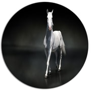 DesignArt 'Isolated Black Horse on Black' Animal Graphic Art Print on Metal; 11'' H x 11'' W x 1'' D