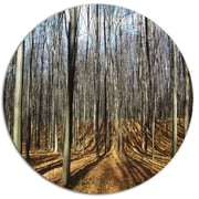 DesignArt 'Shade from Sun in Autumn Forest' Photographic Print on Metal; 11'' H x 11'' W x 1'' D