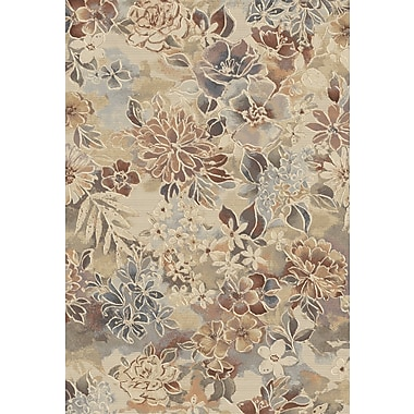 Dynamic Rugs Eclipse Area Rug; 5'3'' x 7'7''