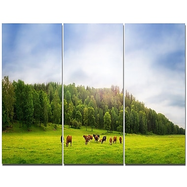 DesignArt 'Cows on Field Panorama' Photographic Print Multi-Piece Image on Wrapped Canvas