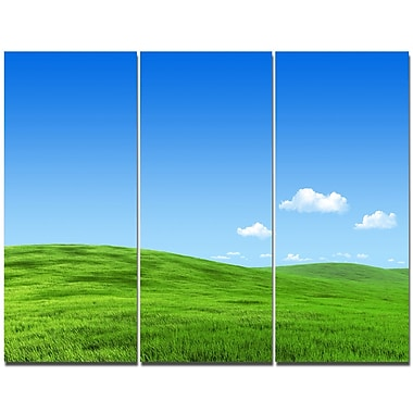 DesignArt 'Calm Green Meadow' Photographic Print Multi-Piece Image on Wrapped Canvas