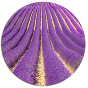 DesignArt 'Beautiful Pattern of Blooming Lavender' Flower Photographic Print on Metal