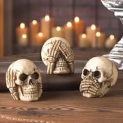 Zingz & Thingz See Hear Speak Skull Set