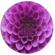 DesignArt Light Purple Flower and Petals Photographic Print on Metal; 11'' H x 11'' W x 1'' D