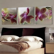 Artistic Bliss 'Orchids' 3 Piece Photograph Multi-Piece Image on Wood