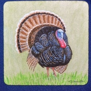 Betsy Drake Interiors Wild Turkey Coaster (Set of 4)