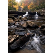 Art Effects 'Glade Creek' Photographic Print on Wrapped Canvas