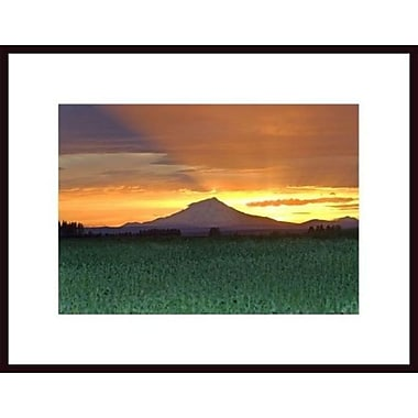 Printfinders 'Mount Shasta 4' by John Nakata Framed Photographic Print