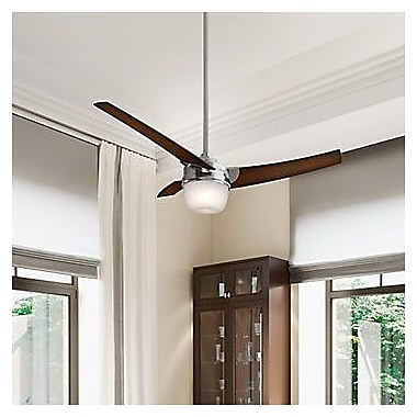 Hunter Fan Eurus 54-Inch Single Light 3-Blade Fan