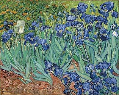 Frame USA 'Irises Poster' by Van Gogh Graphic Art