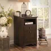 Darby Home Co Buena Vista 2-Drawer Vertical Filing Cabinet