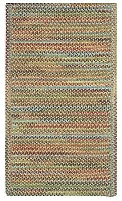 August Grove Phoebe Dusty Multi Rug; 9'2'' x 13'2''