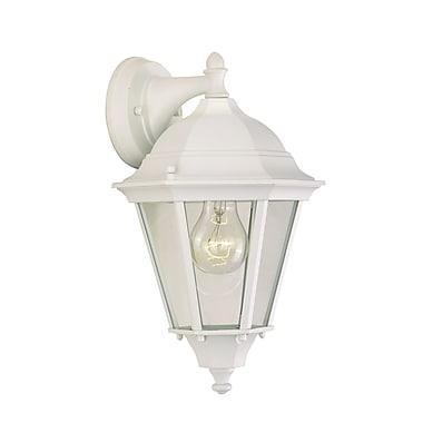 Alcott Hill Listermann 1-Light Outdoor Wall Lantern; White