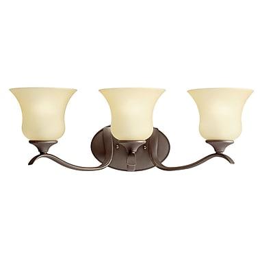 Alcott Hill Barile 3-Light Vanity Light; Olde Bronze in Clear