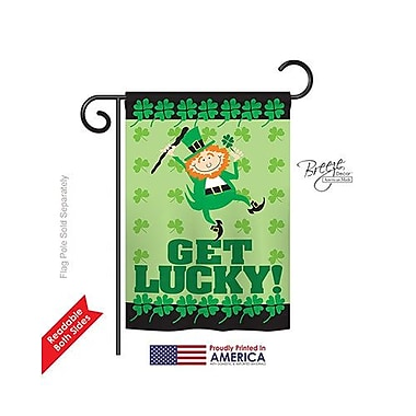 TwoGroupFlagCo Get Lucky 2-Sided Vertical Flag; 18.5'' H x 13'' W