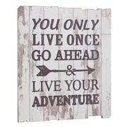 CKK Home D cor, LP Stonebriar 'Live Your Adventure' Weathered Textual Art on Wood