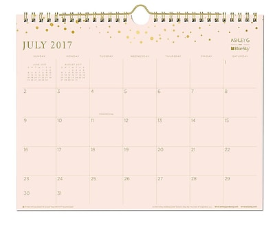 2017-2018 Ashley G for Blue Sky 11x8.75 Wall Calendar, Scatter Dot (101389)