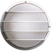 Brayden Studio Hively 2-Light Outdoor Bulkhead Light; White