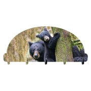 Loon Peak Bears Key Holder