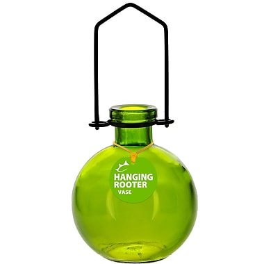 Couronne Hanging Ball Recycled Glass Rooting Wall Vase; Lime
