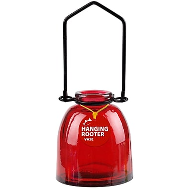 Couronne Ottoman Hanging Recycled Glass Rooting Wall Vase; Red