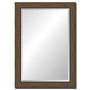Tangletown Fine Art Driftwood Style Accent Wall Mirror