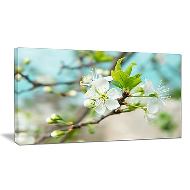 DesignArt 'Beautiful Cherry Blossom n Spring' Photographic Print on Wrapped Canvas