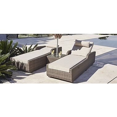 DirectWicker Alisa 3 Piece Chaise Lounge w/ Cushion; Mixed Grey
