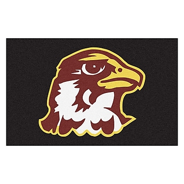 FANMATS Collegiate NCAA Quincy University Doormat