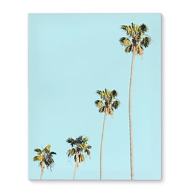 Kavka Four Palms Photographic Print on Wrapped Canvas; 10'' H x 8'' W x 2'' D