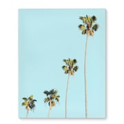 Kavka Four Palms Photographic Print on Wrapped Canvas; 20'' H x 16'' W x 2'' D