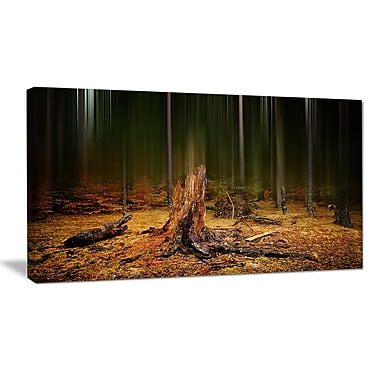 DesignArt 'Dark Fall Forest on Foggy Morning' Photographic Print on Wrapped Canvas
