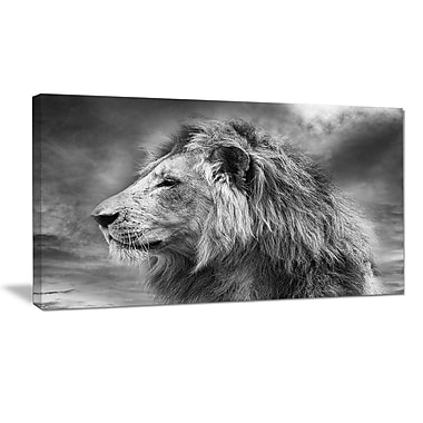 DesignArt 'Gray Wild African Lion' Photographic Print on Wrapped Canvas; 16'' H x 32'' W x 1'' D
