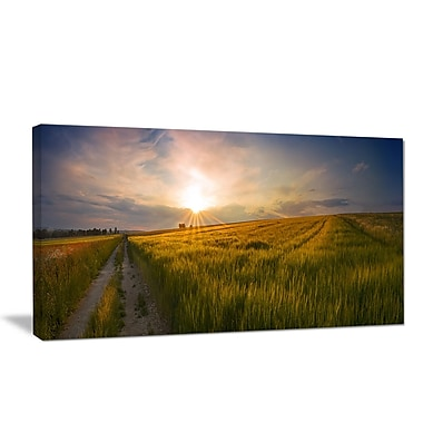 DesignArt 'Sunset in Field of Grain Panorama' Photographic Print on Wrapped Canvas