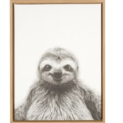 Ivy Bronx 'Sloth Portrait' Framed Photographic Print on Wrapped Canvas; Natural