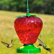 Perky Pet Strawberry Hummingbird Feeder