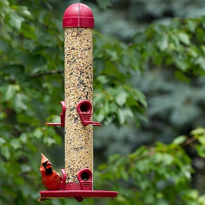 Perky Pet Tube Bird Feeder (WYF078280490149) photo