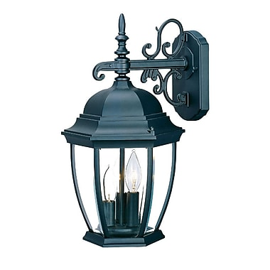 Astoria Grand Drumkeeran 3-Light Outdoor Sconce; Matte Black