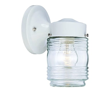 Charlton Home Ledbetter 1-Light Outdoor Steel Wall Lantern; White
