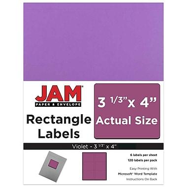 JAM Paper® Mailing Address Labels, 3 1/3 x 4, Violet, 120/pack (302725792)