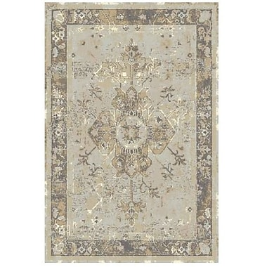 Rugs America Beverly Gray Area Rug; 2' x 3'