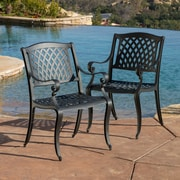Darby Home Co Grimm Cast Aluminum Dining Arm Chair (Set of 2)