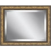 Darby Home Co Framed Beveled Plate Glass Mirror; Medium