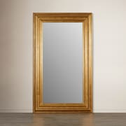 Darby Home Co Leaner Mirror