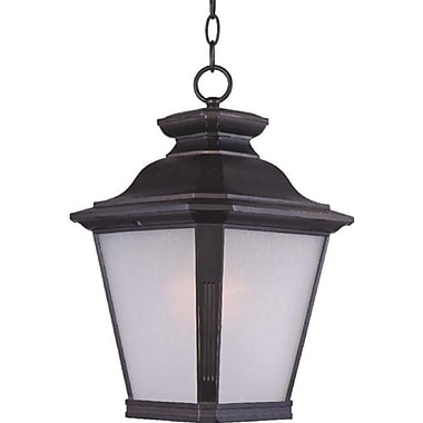 Darby Home Co Sunbury 1-Light Outdoor Hanging Lantern