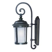 Darby Home Co Unger Outdoor 1-Light Lantern Head